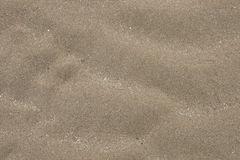 Sand texture or seamless sand background or sandy beach Stock Images