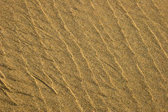Sand Texture series. Textured golden sand Stock Images