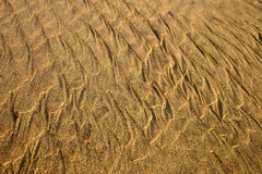 Sand Texture series. Textured sand royalty free stock photo