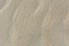 Sand texture top view with bird traces Royalty Free Stock Photos