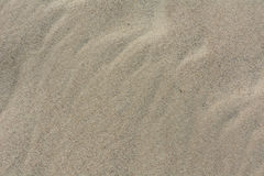 Sand texture top view. Gradient light Royalty Free Stock Photo
