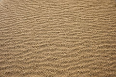 Sand texture. Waves of sand - formed by wind and water royalty free stock photos