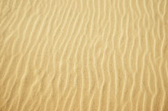 Sand texture. Yellow sand texture for background. top view Stock Photos