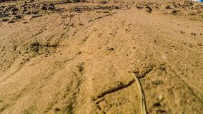 Sand texture yellow brown background  falling sand stock footage