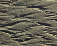 Sand textured Stock Photography
