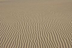 Sand textured background. Natural light Royalty Free Stock Photography