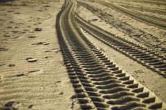 Sand Tracks Royalty Free Stock Images