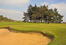 Sand trap. Golf course sand trap and flag stock images