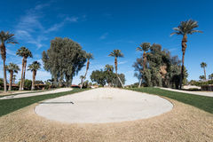 Sand trap or bunker near a golf green Stock Photography