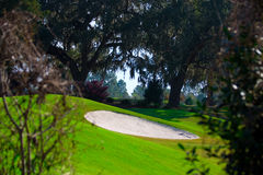 Sand trap on golf course. A view looking through bushes at a sand trap on a hilly golf course Royalty Free Stock Image