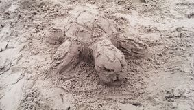 Sand turtle Stock Photos