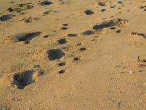 Sand und Erde draußen Stockfoto