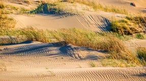 Sand und Gras Lizenzfreies Stockfoto