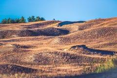 Sand und Gras Stockbild