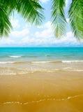 Sand und Ozean stockbild
