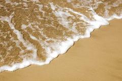 Sand- und Seeschaumgummi Stockbild