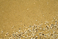 Sand und Shells Lizenzfreie Stockfotografie