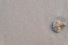 Sand und Stein Lizenzfreie Stockfotos