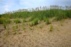 Sand und Strandhafer Lizenzfreies Stockfoto
