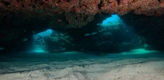 Sand-untere Höhle auf französischem Riff im Schlüssellargo, Florida Lizenzfreie Stockfotografie