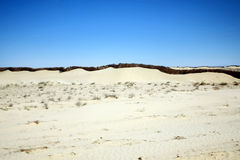 Sand wall in Sahara Royalty Free Stock Image