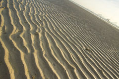 Sand wave Stock Images