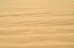 Sand wave texture of nice pale golden color Stock Photography