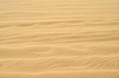 Sand wave texture of nice pale golden color. Desert closeup Stock Photography