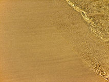 Sand and wavelet. A wavelet on a perfect sand beach Stock Photography