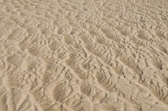 Sand waves. Waves in the beach sand royalty free stock photos