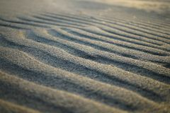 Sand waves Stock Image