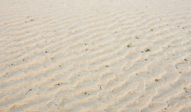 Sand waves on the beach. Sand ripples waves shows on the beach after sea level has decreased Stock Images