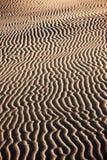 Sand waves in desert Stock Images