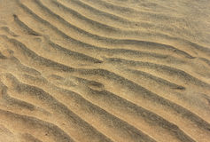 Sand waves on the sea floor Royalty Free Stock Photography