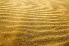Sand waves in the sunlight Royalty Free Stock Photos