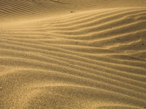 waves of beach sand  Royalty Free Stock Photo