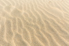 Sand. Wavy Sandy beach in golden color Stock Images
