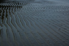 Sand-Welle Lizenzfreie Stockfotografie