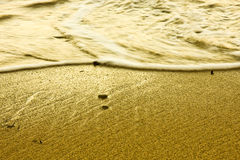 sand wet Стоковое Фото