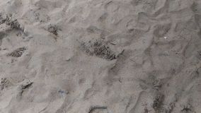 sand white royaltyfri fotografi
