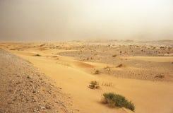 Sand wind Royalty Free Stock Photos