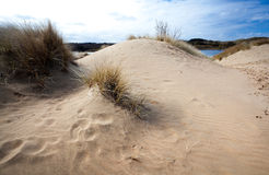 Sand and wind Royalty Free Stock Image