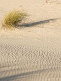 Sand and wind Royalty Free Stock Photography