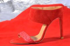 Sanda da sapata ou das mulheres Imagem de Stock Royalty Free