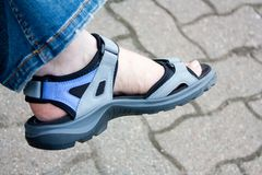 Sandal Stock Photo