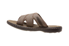Sandal Stock Image