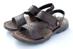 Sandal. Brown leisure sandal on white Stock Photography