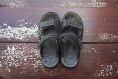 sandal Fotografia de Stock Royalty Free