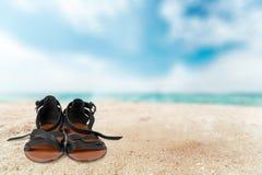 Sandal Stock Photo