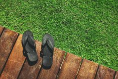 Sandal on wood and grass. Sandal on wooden plank and green grass background Stock Images